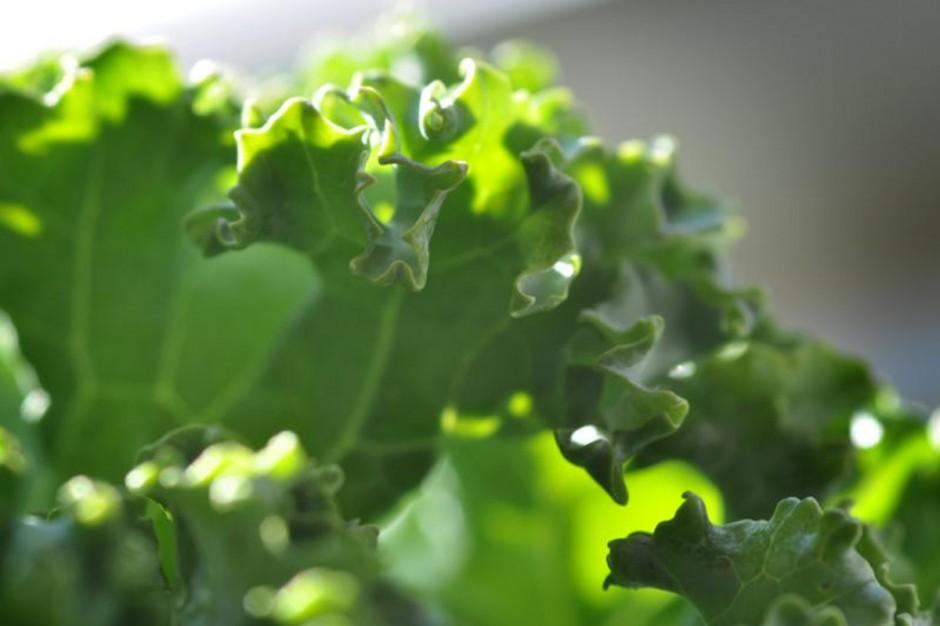 Kale Spinach Balls